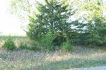 SCENIC ACCESS LOT AT LAKE SOMERSET, HILLSDALE COUNTY