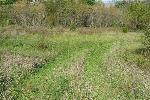 5.67 ACRES LITCHFIELD TOWNSHIP, HILLSDALE COUNTY